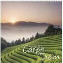 Väggkalender Carpe Diem (Miljö)